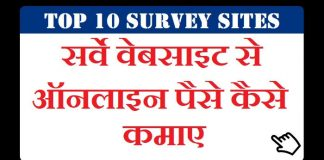Top 10 Survey Sites to make money online in India Hindi